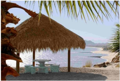 Beach Sea Side Palapa Real Estate